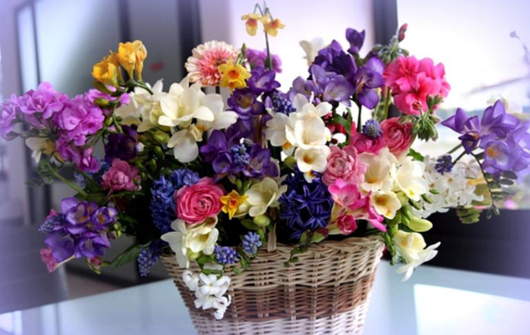 Поздоровлення в прозі для старшої сестри з Днем Народження